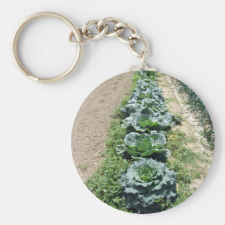 Arrays of cabbages and onions basic round button key ring