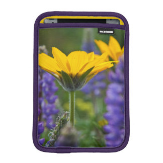 Arrowleaf Balsam Root and Lupine in Spring Bloom iPad Mini Sleeve