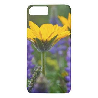 Arrowleaf Balsam Root and Lupine in Spring Bloom iPhone 8 Plus/7 Plus Case