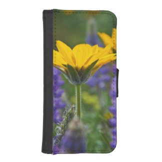 Arrowleaf Balsam Root and Lupine in Spring Bloom iPhone SE/5/5s Wallet Case