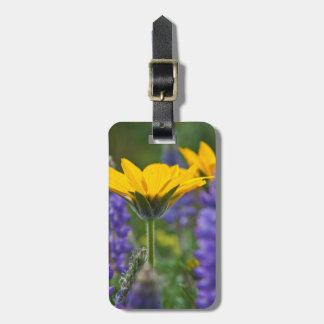 Arrowleaf Balsam Root and Lupine in Spring Bloom Luggage Tag