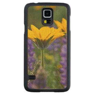 Arrowleaf Balsam Root and Lupine in Spring Bloom Maple Galaxy S5 Slim Case