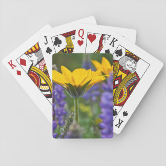 Arrowleaf Balsam Root and Lupine in Spring Bloom Playing Cards