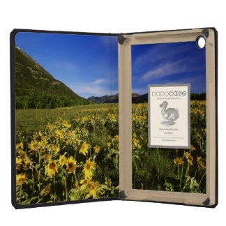 Arrowleaf balsomroot covers the praire with iPad mini covers