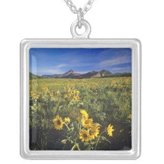 Arrowleaf balsomroot wildflowers in Waterton 2 Square Pendant Necklace