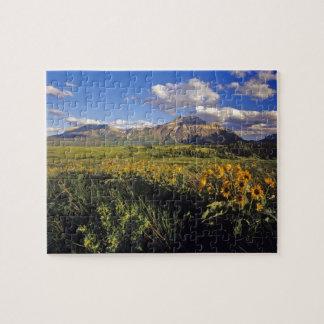 Arrowleaf balsomroot wildflowers in Waterton Jigsaw Puzzle