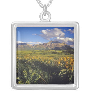 Arrowleaf balsomroot wildflowers in Waterton Square Pendant Necklace