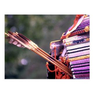 Arrows in a Samurai's Costume Postcard