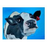 art cow nosey fresian postcards