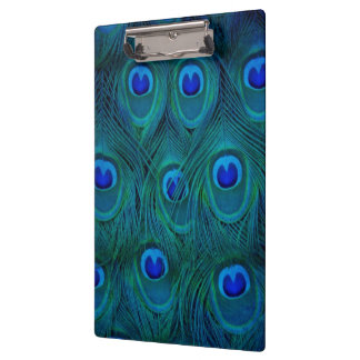 Art Deco  Parisian Teal Green Peacock Feather Clipboard
