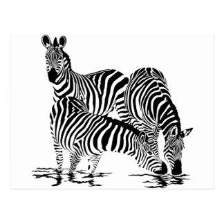 Art Deco  Zebra Postcard