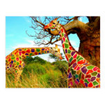 Art Enhanced Giraffes Postcard