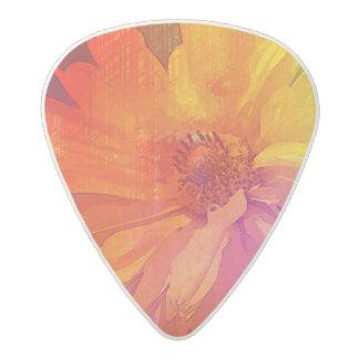 Art Floral Vintage Rainbow Background Acetal Guitar Pick