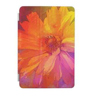 Art Floral Vintage Rainbow Background iPad Mini Cover