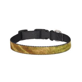 art green, brown hand paint background seamless dog collar