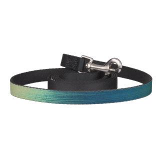 art paper texture for background pet leash