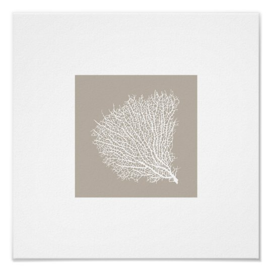 art print of white coral branch