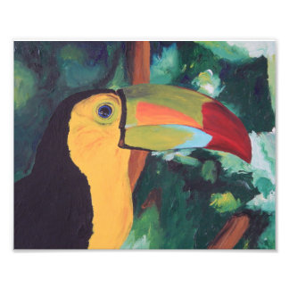 Art Print: Toucan Photo Print