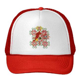 Arte e Futebol encontra - Futebol Português Hat
