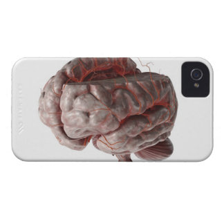 Arteries of the Brain 3 iPhone 4 Case-Mate Cases