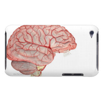 Arteries of the Brain iPod Touch Case