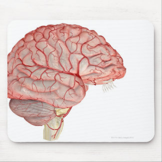 Arteries of the Brain Mouse Mat