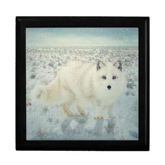 Artic Fox Gift Box