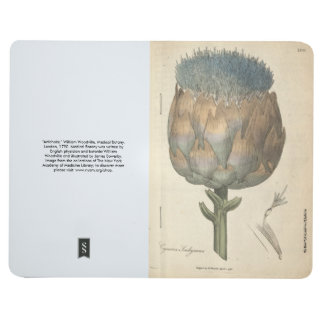 Artichoke Journal