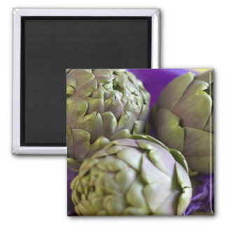 Artichokes For use in USA only.) 2 Square Magnet
