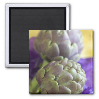 Artichokes For use in USA only.) Square Magnet