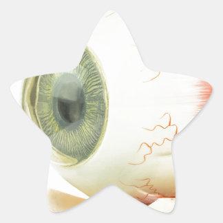 Artificial human eye star sticker