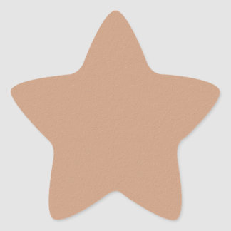 Artist Created Suade look Acrylic Color Pallet Star Sticker