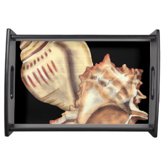 Artistic Conch Shells Serving Tray