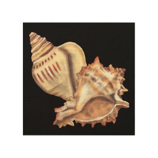 Artistic Conch Shells Wood Wall Art