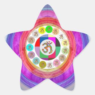 Artistic Presentation Matters - Dr Mantra Navin Star Sticker