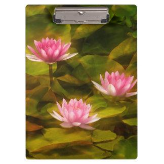 Artistic water lilies, California Clipboard
