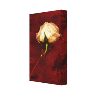 Artistic White Rose Canvas Wrap Canvas Print