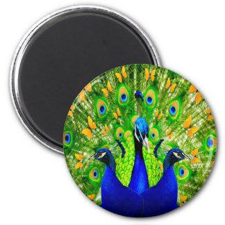 Artistic Yellow Butterflies Blue Peacocks  art 6 Cm Round Magnet