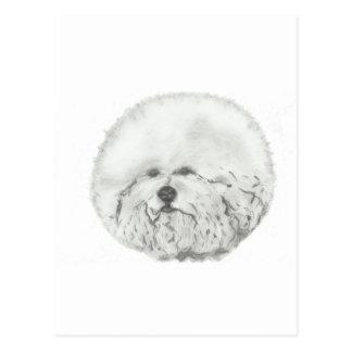 Artistical Bichon Frise head study Post Card