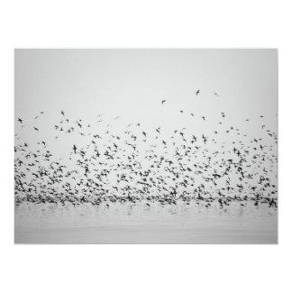Artists  Display works flying birds 17 Cm X 22 Cm Invitation Card