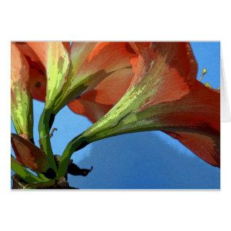 Artsy amaryllis photograph card
