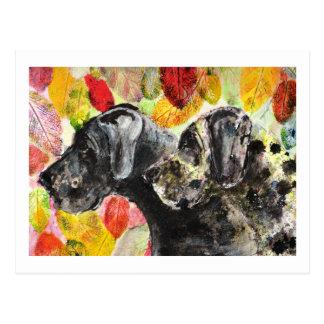 ARtwork Great Dane dogs Postcard