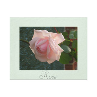 Artwork Rose Decor Pink Green Gallery Wrapped Canvas