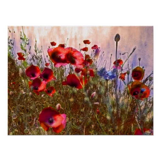 Arty poppies poster