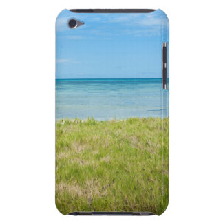 Aruba, grassy beach and sea barely there iPod cases