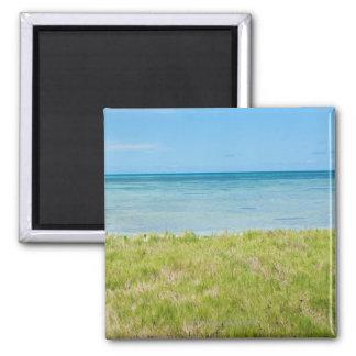Aruba, grassy beach and sea magnet