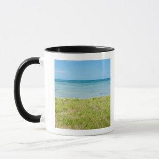Aruba, grassy beach and sea mug