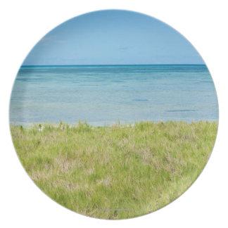 Aruba, grassy beach and sea plate