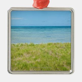 Aruba, grassy beach and sea Silver-Colored square decoration