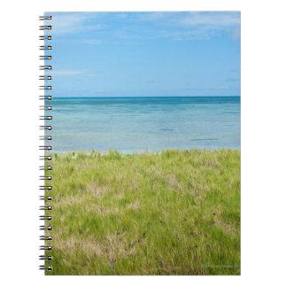 Aruba, grassy beach and sea spiral notebook